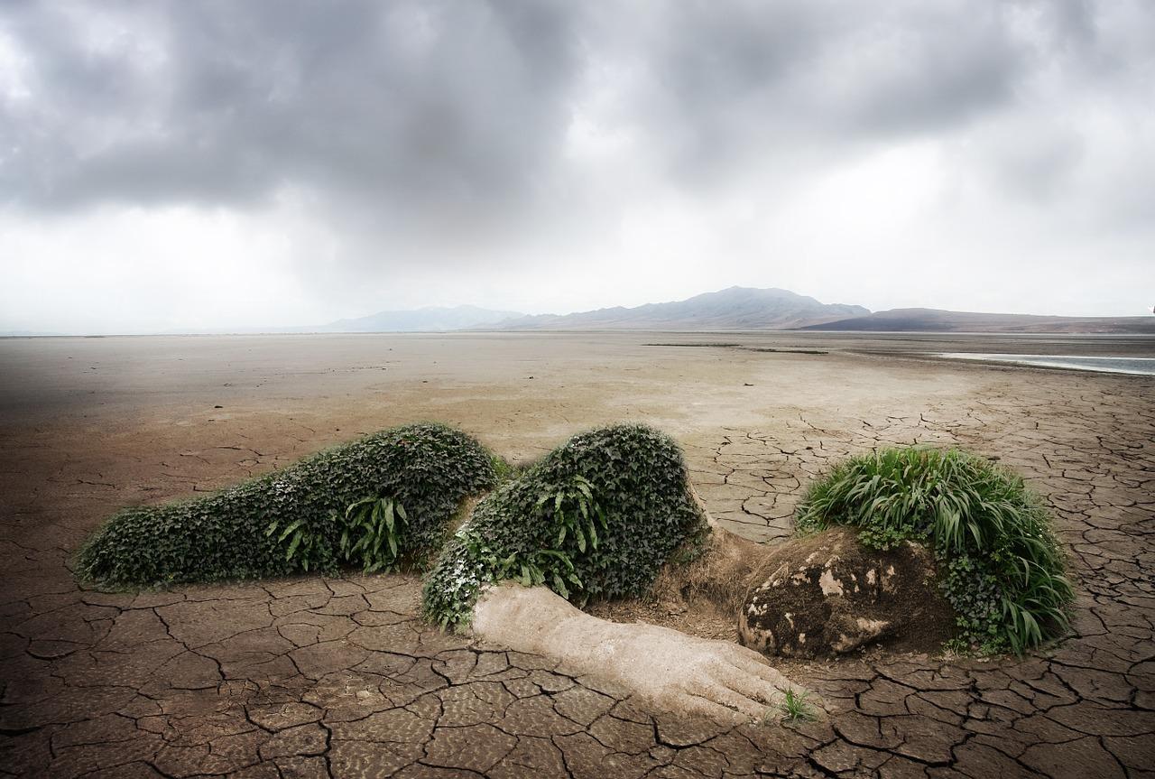 La complexité du débat environnemental