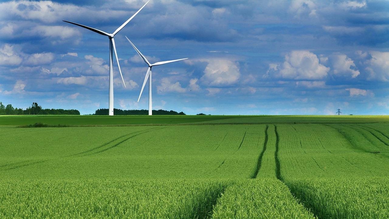 La responsabilité environnementale des entreprises